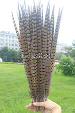 Wholesale 10-100pcs 12-24 inch / 30-60 cm pretty natural pheasant tail feathers