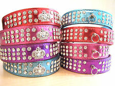 Crown or Ring, Bling, Rhinestone Metallic PU Leather Collar 4 Small, Medium Dog