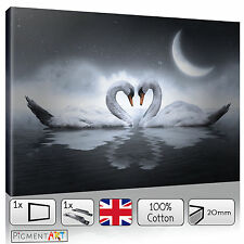 BLACK AND WHITE LOVE SWANS MODERN - LARGE CANVAS WALL ART FRAMED PRINTS PICTURES