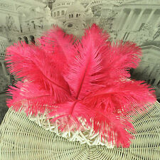 SET OF 2 8 INCH OSTRICH FEATHERS VARIOUS COLOURS