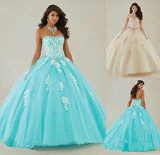 Applique Quinceanera Dreses Formal Prom Pageant Party Ball Gowns Wedding Dress