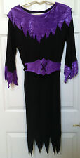 Women's Adult OSFM Black and Purple Crushed Velvet Witch Costume - NWOT