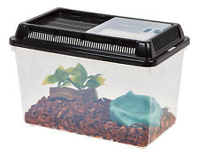 IRIS Small Animal Terrarium, Insect Habitat, Insect Cage, Bug Holder - Lot of 8
