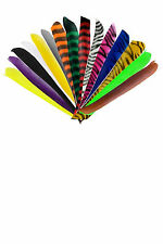 50 x Bearpaw turkey feathers barred full length RW turkey feathers full length