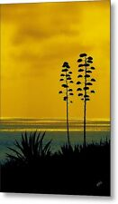 Ocean Sunset With Agave Silhouette Color Fine Art Print on Metal or Acrylic
