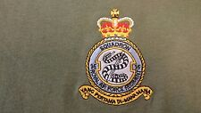 RAF ROYAL AIR FORCE REGIMENT 15 SQUADRON HOODIE