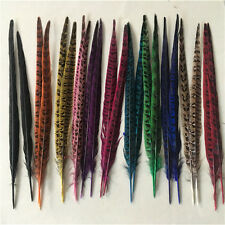 10-100pcs beautiful natural pheasant tail feathers 10-12 inches/25-30 cm DIY