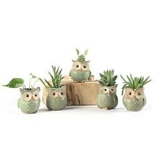 Ceramic Garden Planters Green Small Indoor Outdoor Flower Pots Cactus Owl Style
