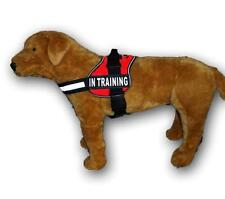 Nylon Dog Harness IN TRAINING patches Assistance Mobility Guide Working Vest USA