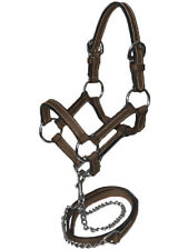 Mini horse Leather Halter With Lead