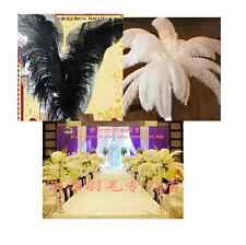 Wedding Decoration!High Quality  OSTRICH FEATHERS15-55cm/6-22inch Perfect