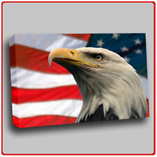 Modern Canvas Art Print Animal Eagle with American flag