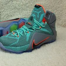 "NIKE LEBRON 12  ""CRIMSON"" Size 9 10 11 12 13 14 What The South Beach Low"