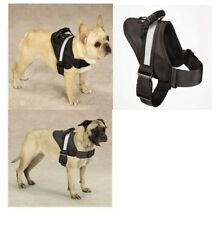 All Purpose No Pull Dog Harness w/ Grab Handle GUARDIAN GEAR EXCURSION Pick Size