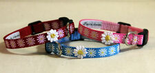 Daisy Dog Collars (pink/blue/lilac/red) - teacup/ tiny dog/ puppy /chihuahua etc