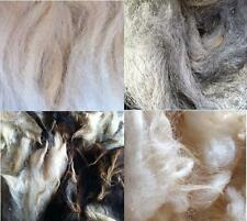 Washed Wool for Craft and Stuffing