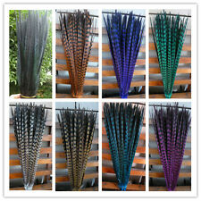 Wholesale! 10-100 Pcs 25 -55 cm/10-22 inches natural pheasant tail feathers