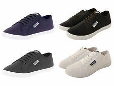 New Henleys Mens Black Grey White  Navy Canvas Lace Up Shoes Pumps Trainers