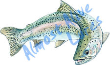 Almost Alive Realistic Art Rainbow Trout Vinyl Decal - Car Home Truck SUV Boat