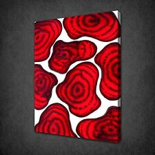 BEETROOT SLICES KITCHEN DESIGN CANVAS WALL ART PRINT PICTURE READY TO HANG