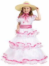 Sweet Southern Belle Child Toddler Halloween Costume 3T 4T Hoop Dress Hat