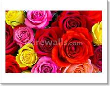 Roses Art Print/Canvas Print Home Decor Wall Art