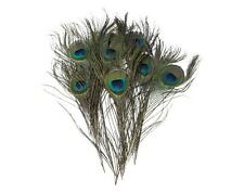 10-100pcs Peacock Tail Feathers Natural 10-12inch For Bouquet DIY Decoration