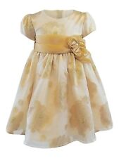 Bonnie Baby Baby Girls Sheer Burnout Party Dress - Baby Girl Holiday Dress