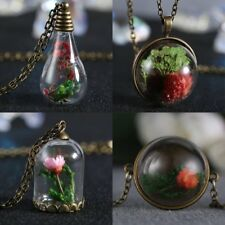Fashion Natural Real Dried Flower Terrarium Drop Glass Pendant Necklace Jewelry