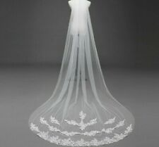 Females Cathedral Long Lace Edge Bridal Veils With Comb Appliqued One-Layer Veil