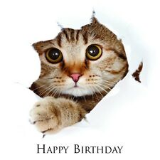 Quality Birthday Greetings Card -  Cat & Kittens  Designs from Red Frog Cards