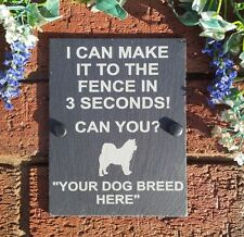 "Funny Slate Dog Plaque  ""I Can Make The Fence In 3 Seconds"" 17x13cm (Breeds I-N)"
