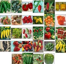 28 HOT SWEET PEPPER SEEDS also BEll*GHOST*THAI*CAYENNE all HEIRLOOM VEGETABLE