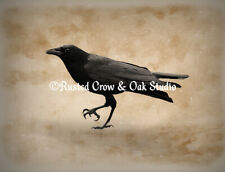 Rustic Crow Black Bird Original Signed Handmade Matted Picture Art Print A491