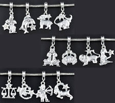 Wholesale Lots Mixed Silver Plated European Dangle Beads Fit Charm Bracelet