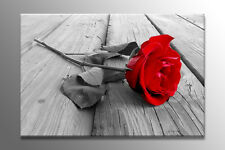BEAUTIFUL LARGE CANVAS WALL ART RED ROSE PICTURE STUNNING PRINT FLOWER A0 A1 NEW