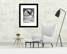 Black and White Cross with Wings Crow Moon Redemption Art Matted Picture A623