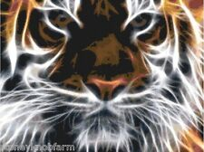 Tiger ~ Big Cats ~ Counted Cross Stitch Pattern Chart
