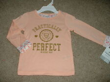 NEW Toddler Girls Carters Practically Perfect Peach Fall Shirt Size 2T 3T 4T NWT
