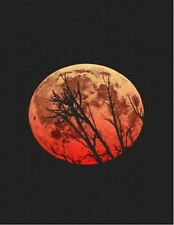 BLOOD MOON red nature outdoors scenery constellations photo glossy t-shirt