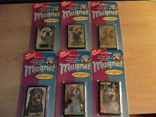 Dog Magnets- Different Breeds to choose from *Only 99p each*