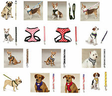 Soft Anti Pull Chest Plate Harness & Lead Combos for Dogs Matching Dog Sets !