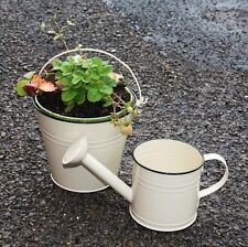xtra large cream 19.5CM bucket planter or watering can gardener gift kids play