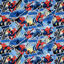 Marvel Comics Spiderman Panes Blue by Springs #244-1