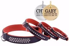 CollarDirect Leather Studded Dog Collar FREE PERSONALIZED ID TAG Orange Puppy