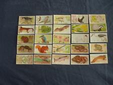 BROOKE BOND TEA CARDS:A JOURNEY DOWNSTREAM 1990:BUY INDIVIDUALLY NO's 1 - 25