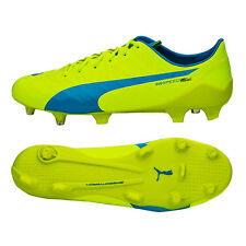 Puma evoSPEED SL-S FG Men's Soccer Cleats Boot Football Shoes 103731-01