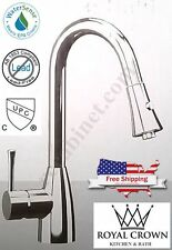 SFC Brushed Nickel Gooseneck Single Handle Pull-out Kitchen Faucet, Model: 96455