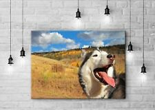 """Your Photo on Canvas - Gallery Wrapped 16""""x20"""" inches in size!"""