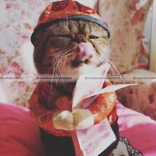 Chinese Tang Style Pet Dogs Cat Puppies Clothes Traditional Coat + Hat